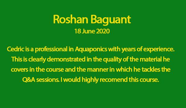 Roshan Baguant review.jpg