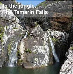 Tamarinfalls.jpg