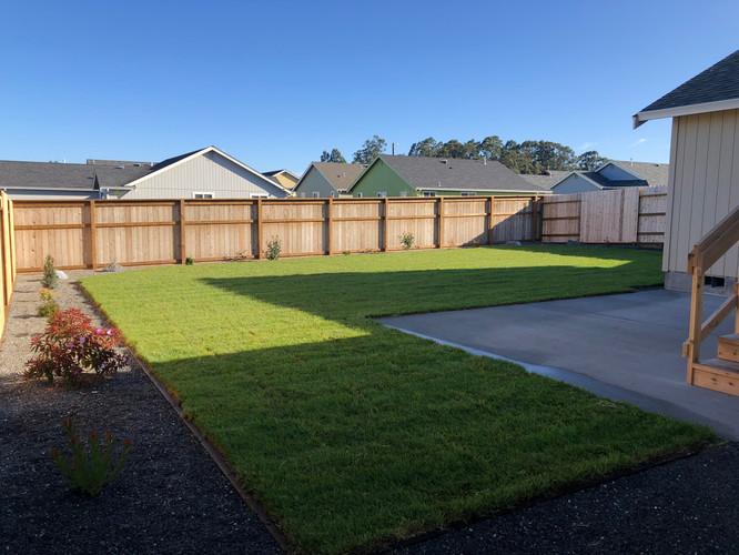 1355-Rear Yard