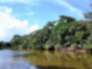 Playa Grande Shuttle & Tours nationa park estuary boat tour