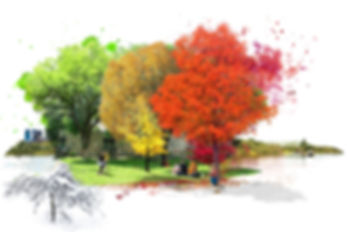 over the seasons2_.jpg