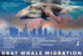 Gray Whale migration Matchaparty3.jpg