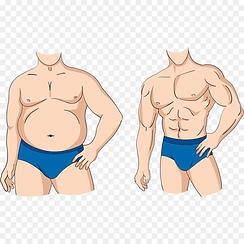 kisspng-adipose-tissue-weight-loss-carto