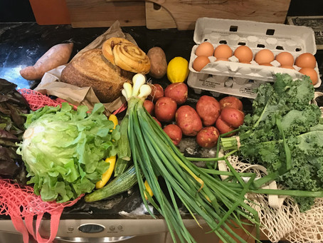 Local Bounty & Plastic Free Storing