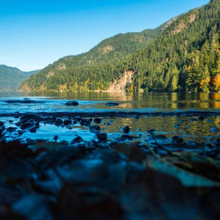 Lake Crescent, Washington.jpg