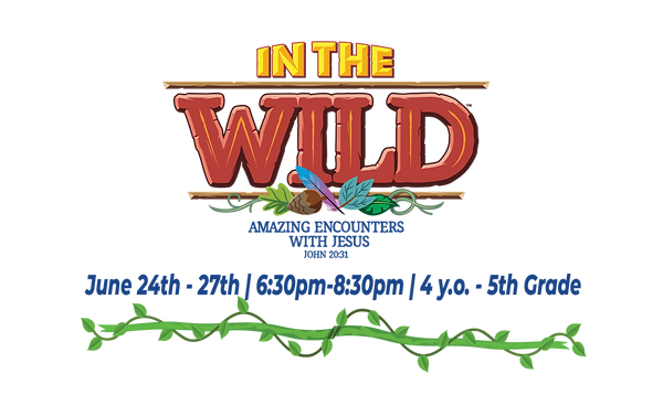 In The Wild Website Header VBS-01.png