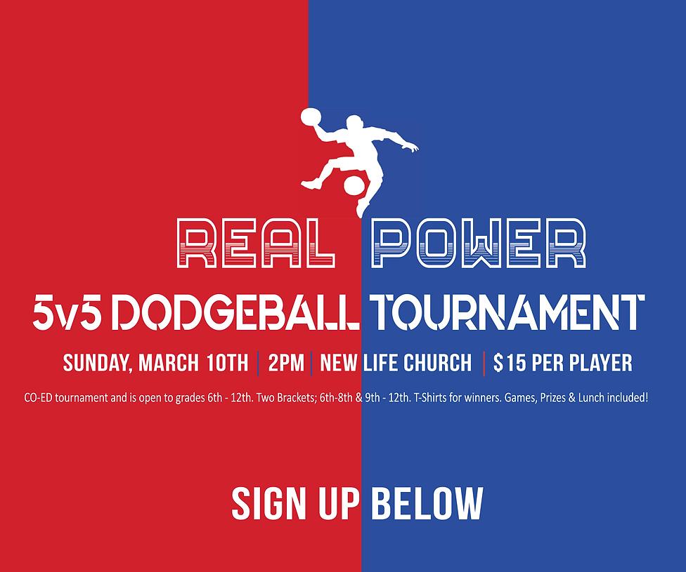 Dodgeball web 2019-01.png