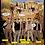 Thumbnail: Hot Brass, Pharaoh's Gold