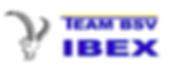 logo ibex_weiss.png