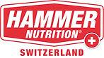 Hammer-Badge-Switzerland-3.jpg