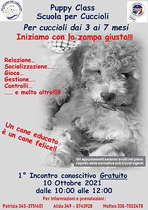 puppy2021.jpg