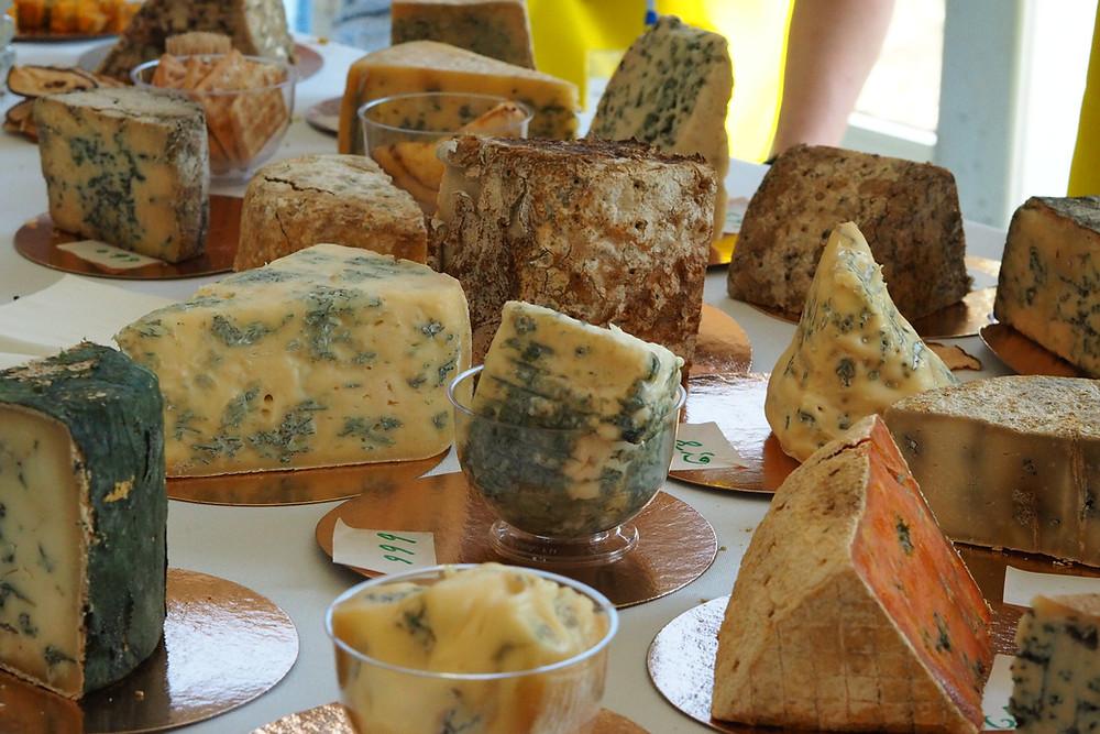 Лучший сыр России сыры с плесенью