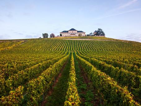 Победители The World's Best Vineyards 2021 года будут объявлены 20 сентября 2021 в Германии.