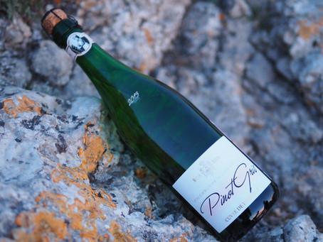 """Дом шампанских вин """"Новый Свет"""". Какое вино выбрать?"""