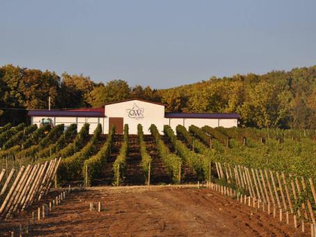 Вина Gunko Winery попали в рейтинг Robert Parker The Wine Advocate!
