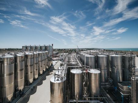 ГК «Ариант» в 2020 году произвела более 90 млн бутылок вина!