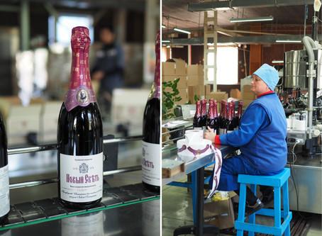 Дом шампанских вин Новый Свет. Винный маршрут.