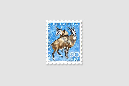 Capricorn 50 RP | Stock: 128 Piece