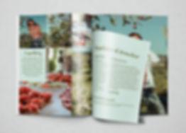 ink on paper, graphic design, grafik, catalog