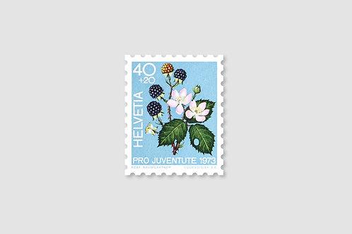 Flower Blackberry | 40 RP | Stock: 160 Piece