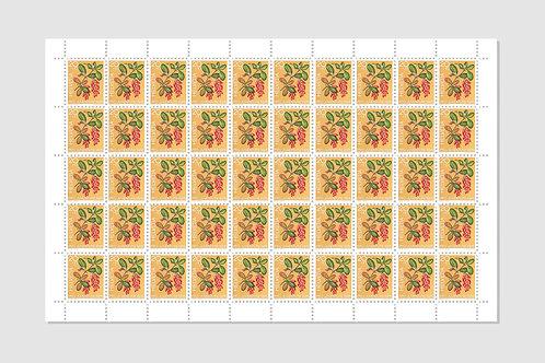 Berberitze | Bogen von 50 | 15 RP | Lager: 1 Bogen