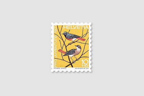 Bird Redstart | 10 RP | Stock: 102 Piece