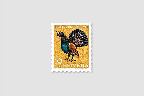 Turkey 10 RP | Stock: 210 Piece