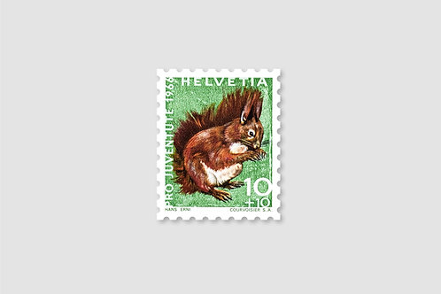 Squirrel 10 RP | Stock: 190 Piece