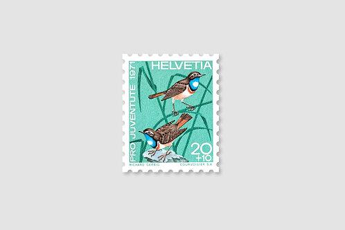 Bird Bluethroat | 20 RP | Stock: 203 Piece