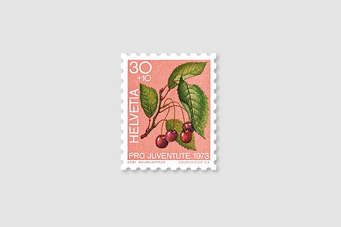 Flower Cherry | 30 RP | Stock: 29 Piece