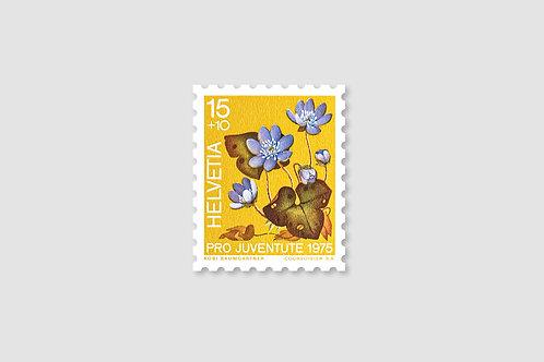 Flower Liverleaf | 15 RP | Stock: 16 Piece