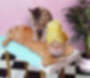 | וטרינר כפר יונה |וטרינרית כפר יונה | וטרינר בכפר יונה |וטרינרית בכפר יונה | וטרינר חניאל |וטרינרית חניאל | וטרינר בחניאל | וטרינרית בחניאל | עיקור כפר יונה | עיקור בכפר יונה | סרוס בכפר יונה | וטרינר בורגתא | וטרינר בארותיים | וטרינר עולש | וטרינר ניצני