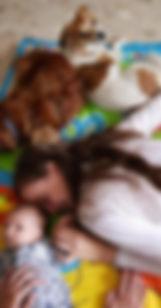 עופר דוייב, דר עופר דוייב, דר דוייב, וטרינר, מרפאה וטרינרית, בית חולים וטרינרי, חיות בית, כלב, חתול, ארנבת, סירוס, סרוס, עיקור, עקור, מספרה לחיות, מספרת חיות, מספרה וטרינרית, אירית רביב, איילת אדיב, וטרינר כפר יונה, וטרינר עמק חפר, וטרינר השרון, וטרי