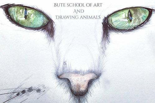 Drawing Animals 12th June 10-3pm 2019