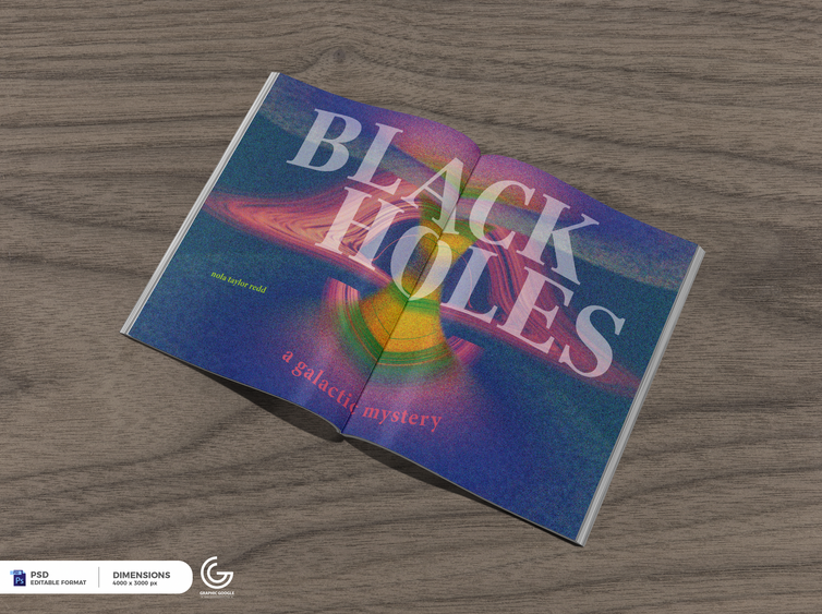 Baily McDaniel, Alternative view of Black Holes: A Galactic Mystery