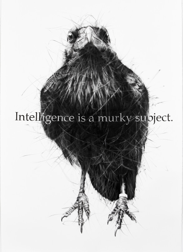 Intelligence is a murky subject.