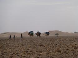 La caravane musicale,Maroc