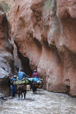 Gorges du M'Goun, Maroc