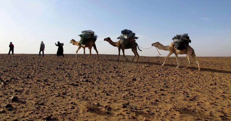 La caravane musicale, Maroc
