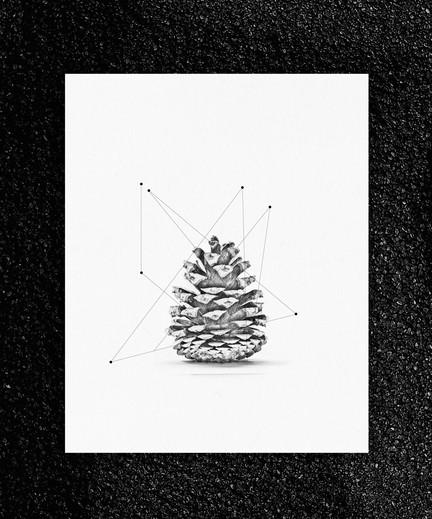 pieces-1.jpg