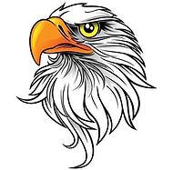 Eagle Image.jpg