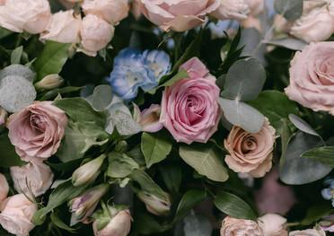 Forest_Bloom_flowers.jpg