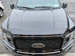 paint protection film f 150