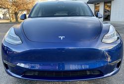 Tesla paint protection