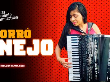 ForróNEJO 10 | Sertanejo em Ritmo de Forró | KLB, Zezé di Camargo & Luciano, Amado Batista | Remix