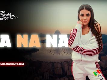 Now United - Na Na Na | Versão Pisadinha | By. Ariel Skinny Remix
