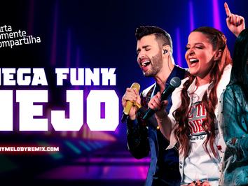 MEGA FUNKNEJO #004   Gusttavo Lima, Maiara & Maraisa, Zé Neto e Cristiano, Malu   Sertanejo Remix