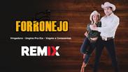 MEGA ForróNejo | Sertanejo Remix em Forró #01 | By. DJ Wagner Araújo