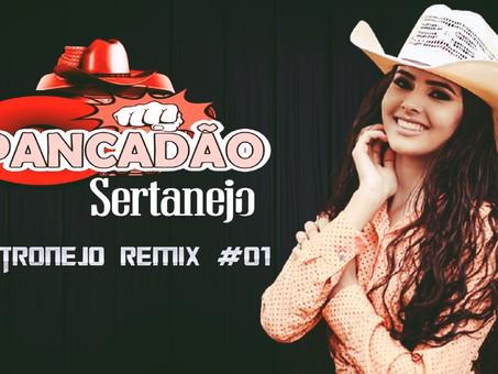 Mega Pancadão Sertanejo | Eletronejo | Sertanejo Remix  2021 | Top Sertanejo #01