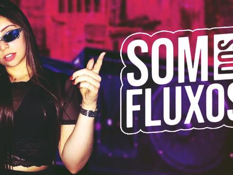 MEGA FUNK   O Som dos Fluxos   By. DJ DuLLy #02